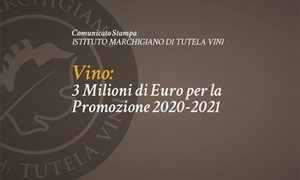 Istituto marchigiano vini