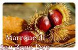Marrone di San Zeno dop