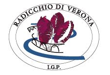 Radicchio di Verona Igp